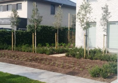 Aanplanten van voortuin en tuin rond de woning
